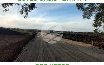 TERRENOS DE 600 M2 – LOTEO OASIS 4 – ORO VERDE